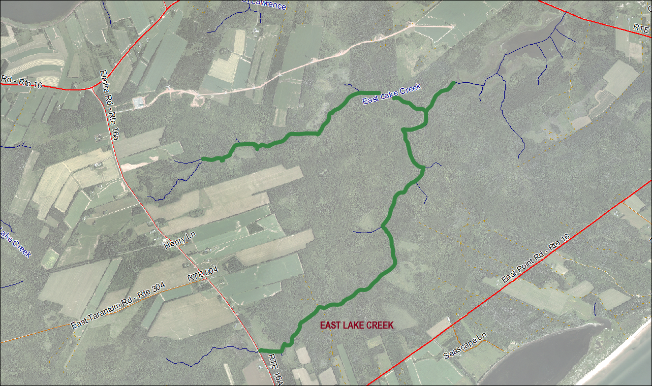 East Lake Creek Stream Habitat Restoration Map