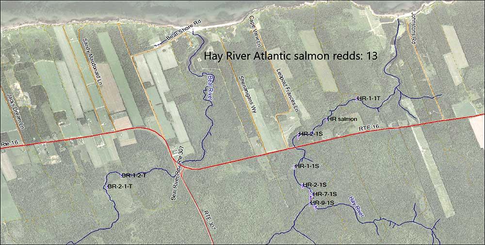 Hay-River-redds-2019